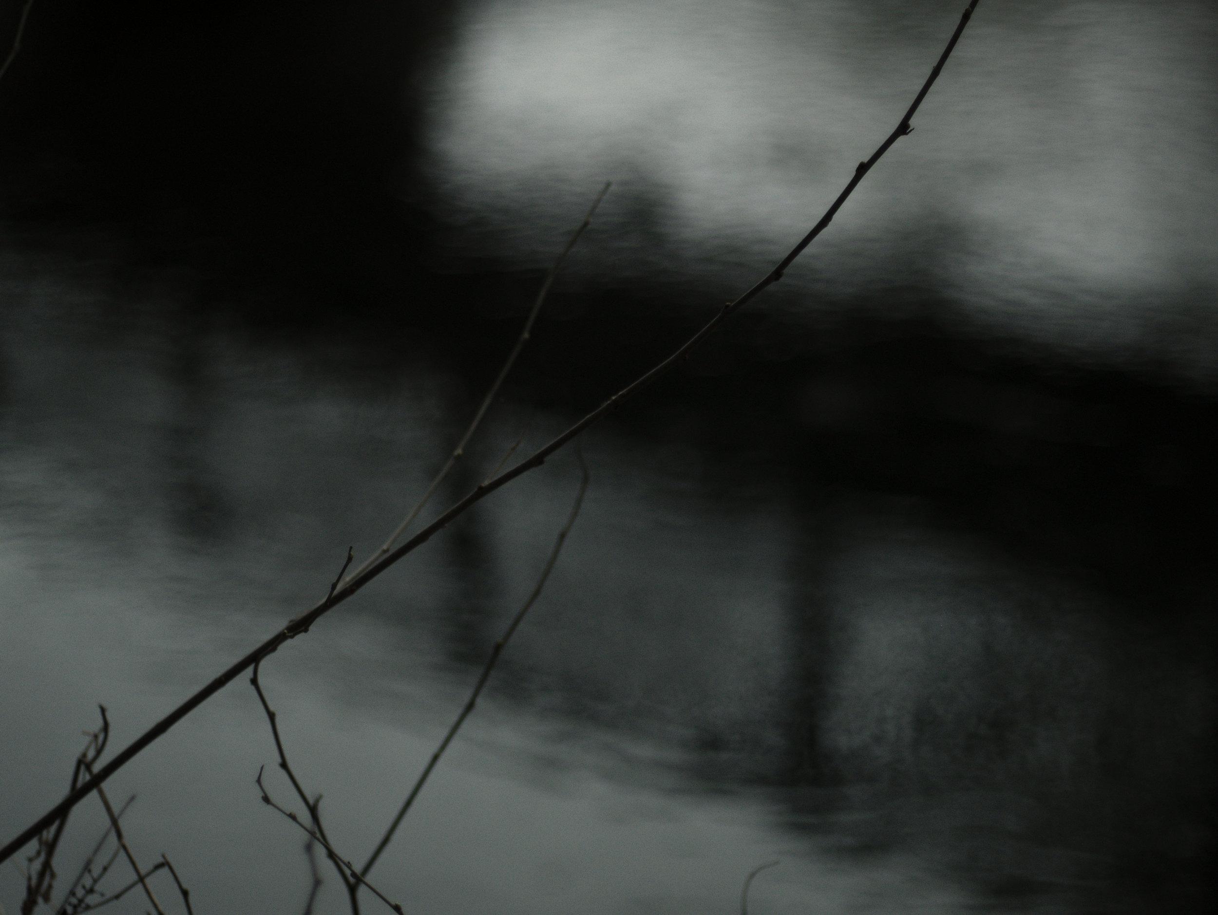 riverbranch_3.jpg