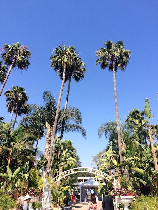 Rancho de las Palmas, the beautiful venue of our friends' wedding in Moorpark.