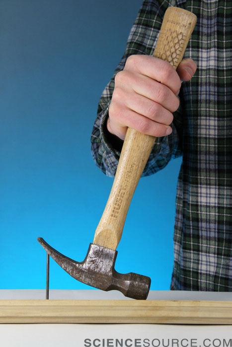 Claw Hammer and Nail