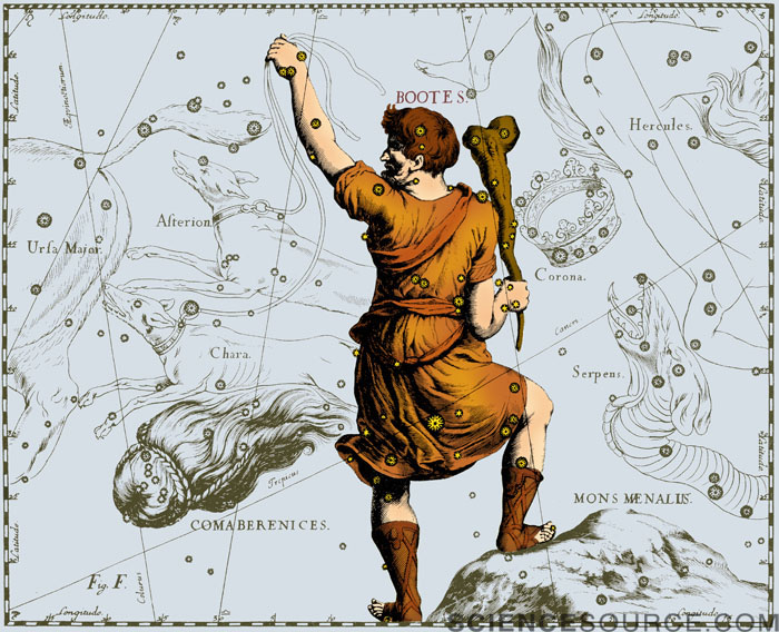 Bootes Constellation, 1687