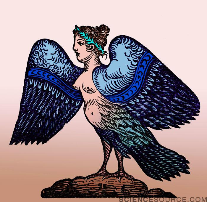 Harpy, Legendary Creature