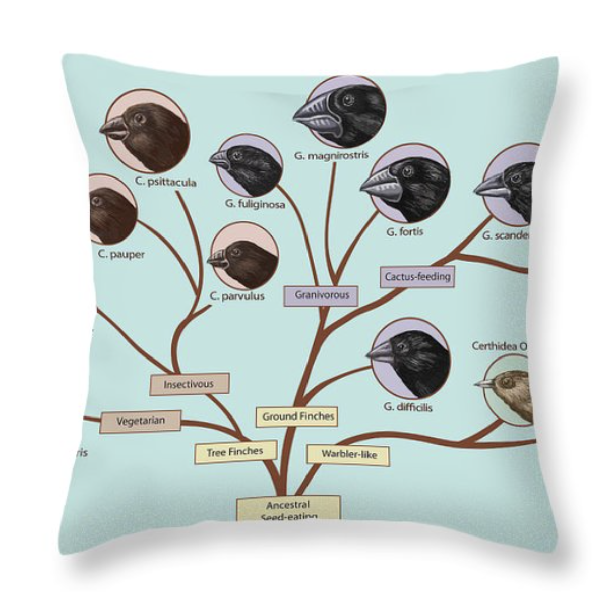 Finch Family Tree Throw Pillow