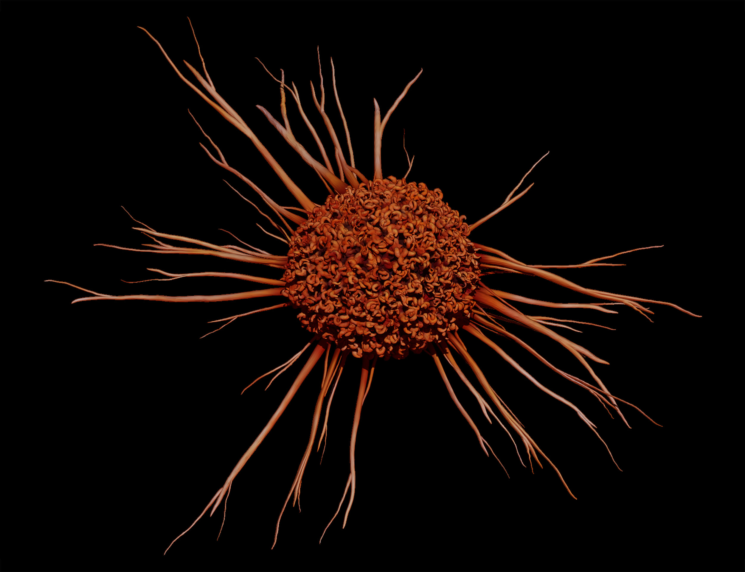 Cancer Cell, 3D Illustration