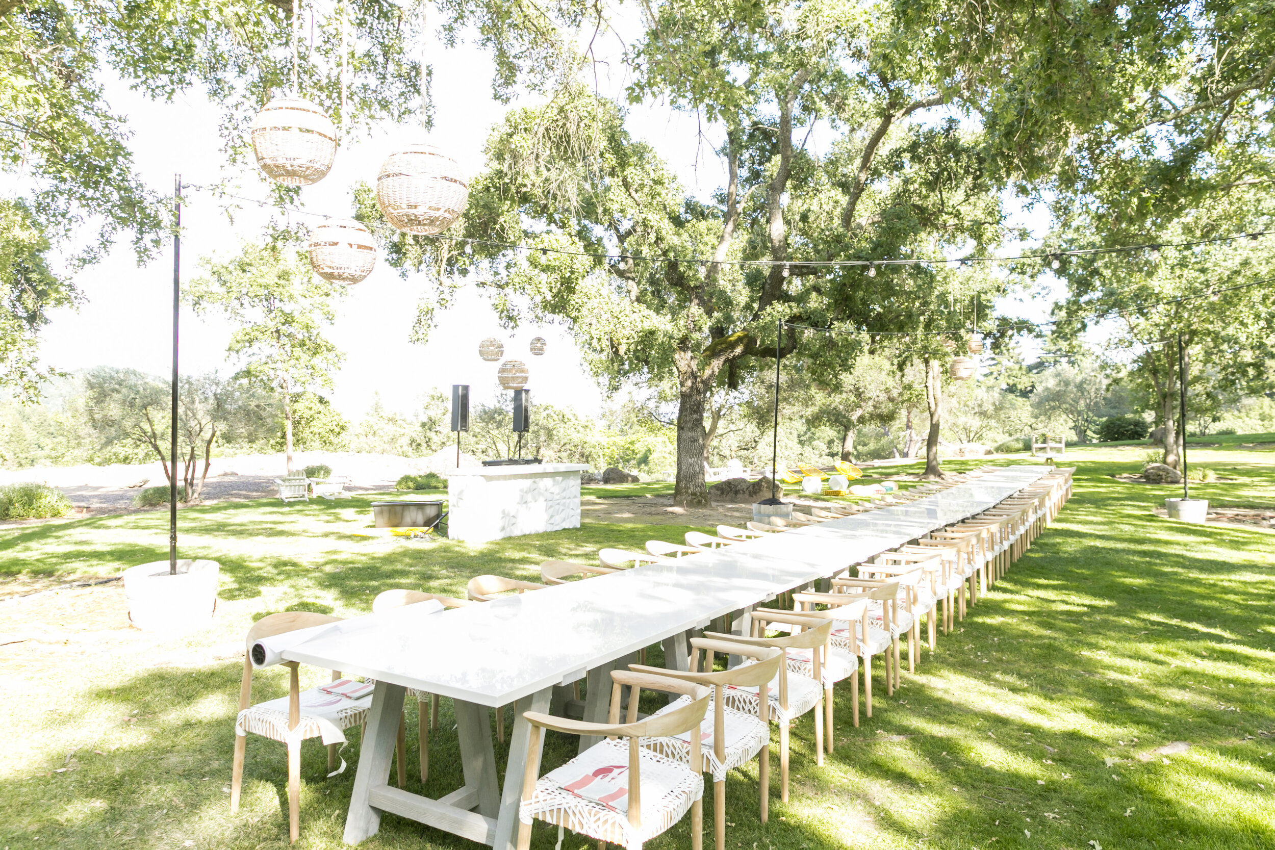 Domaine Chandon Event 6.10.19_48.jpg
