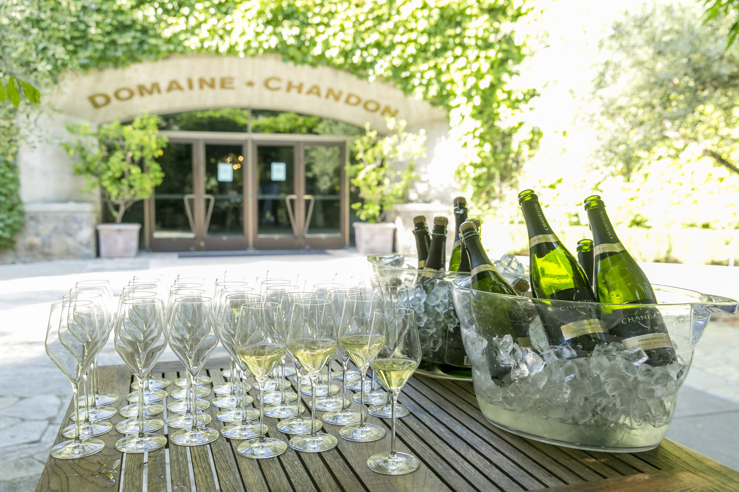 Domaine Chandon Event 6.10.19_70.jpg