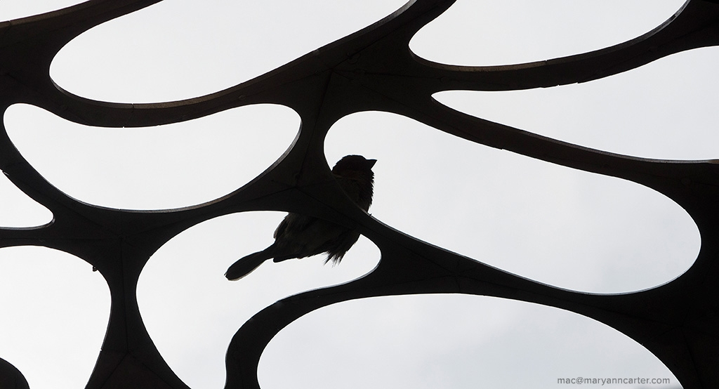 Bird on Sculpture