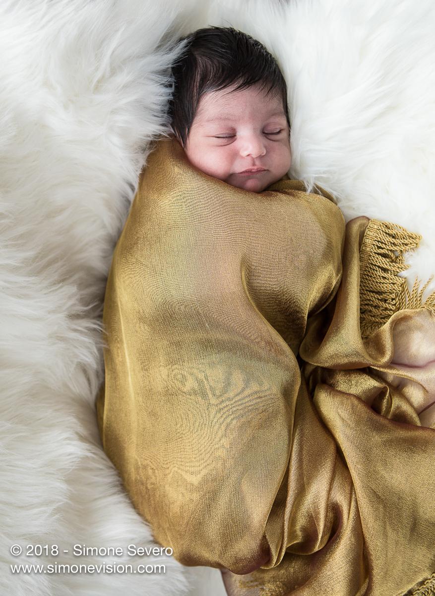 colorado springs newborn photographer web-8342.jpg