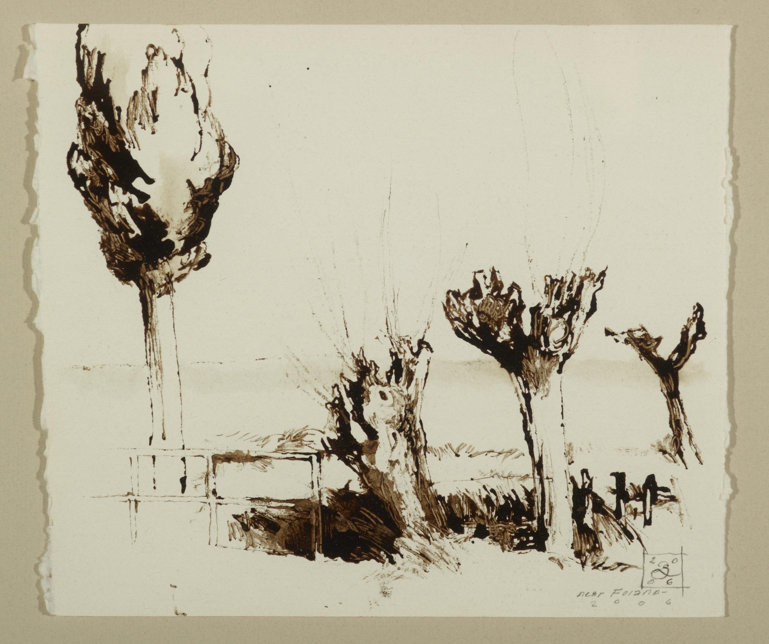 Three Trees Near Foiano