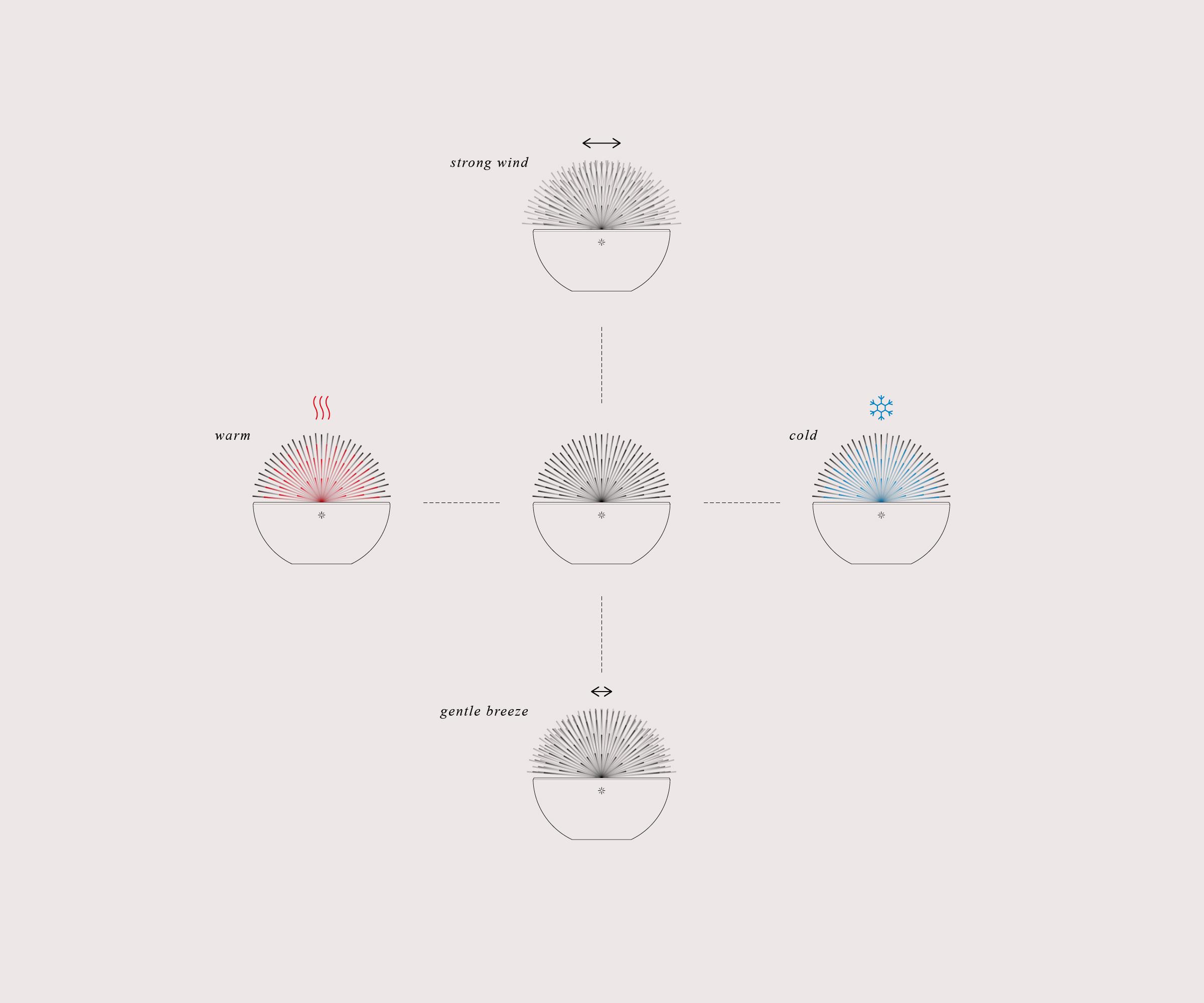 dandelion-illust-scenario.jpg