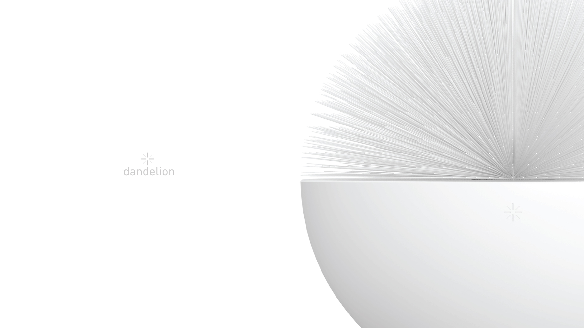 dandelion-closeup.jpg