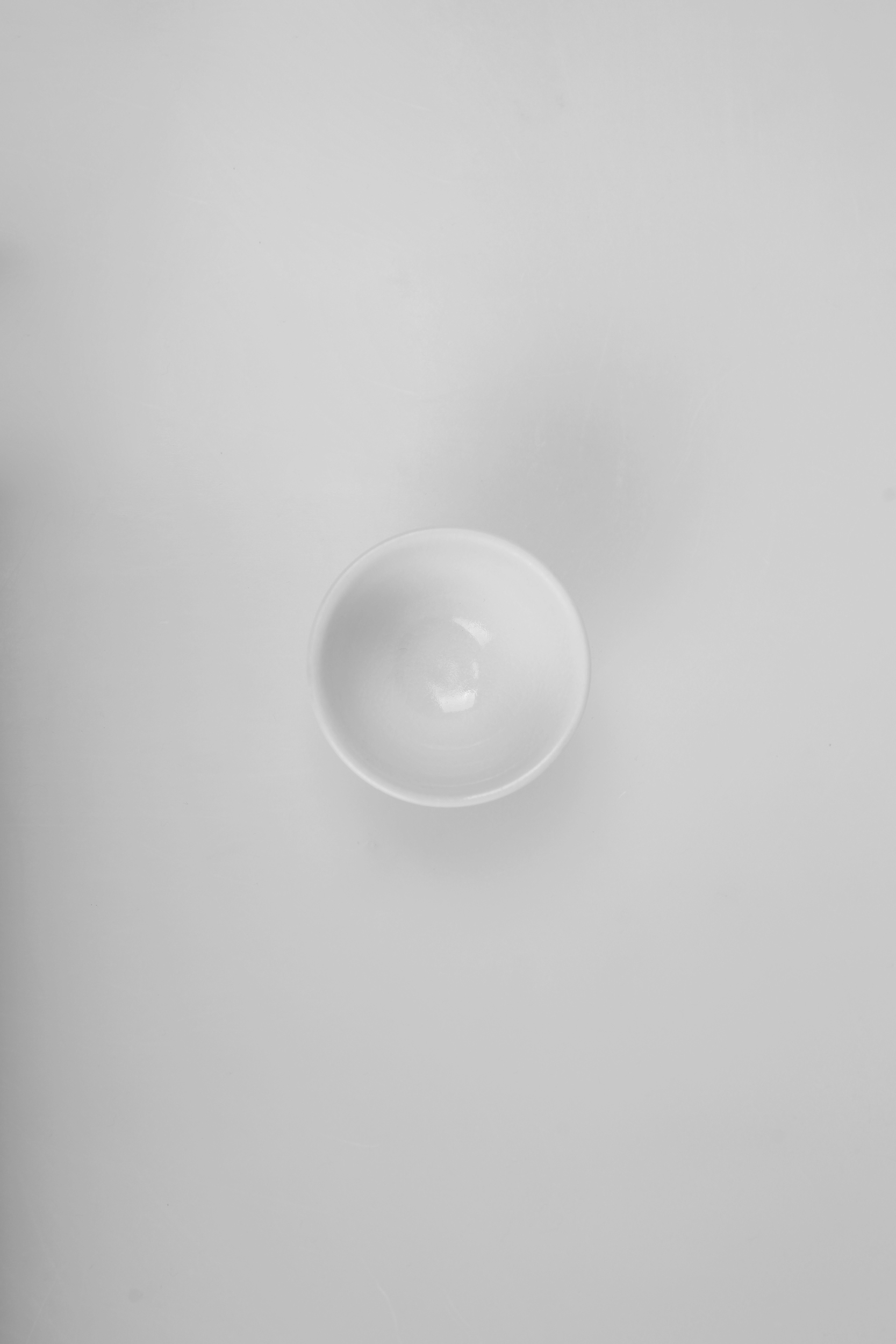 White tea cup / porcelain / unknown