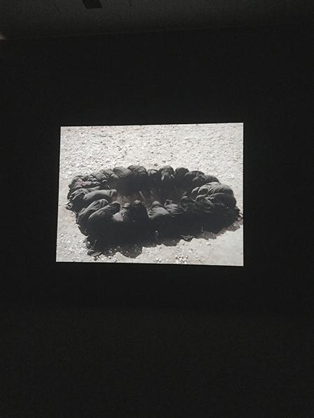 © twelvemonthly  / Passage (2001) by Shirin Neshat @SFMOMA