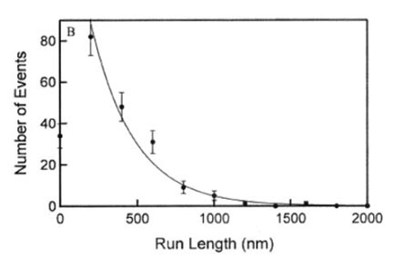 Stepping and stretching: how kinesis uses external strain to step processively.  Rosenfeld, S.S.,  Fordyce, P.M. , Jefferson, G.M., King, P.H., & Block, S.M.  Journal of Biological Chemistry  (2003).  ( pdf ) ( web )