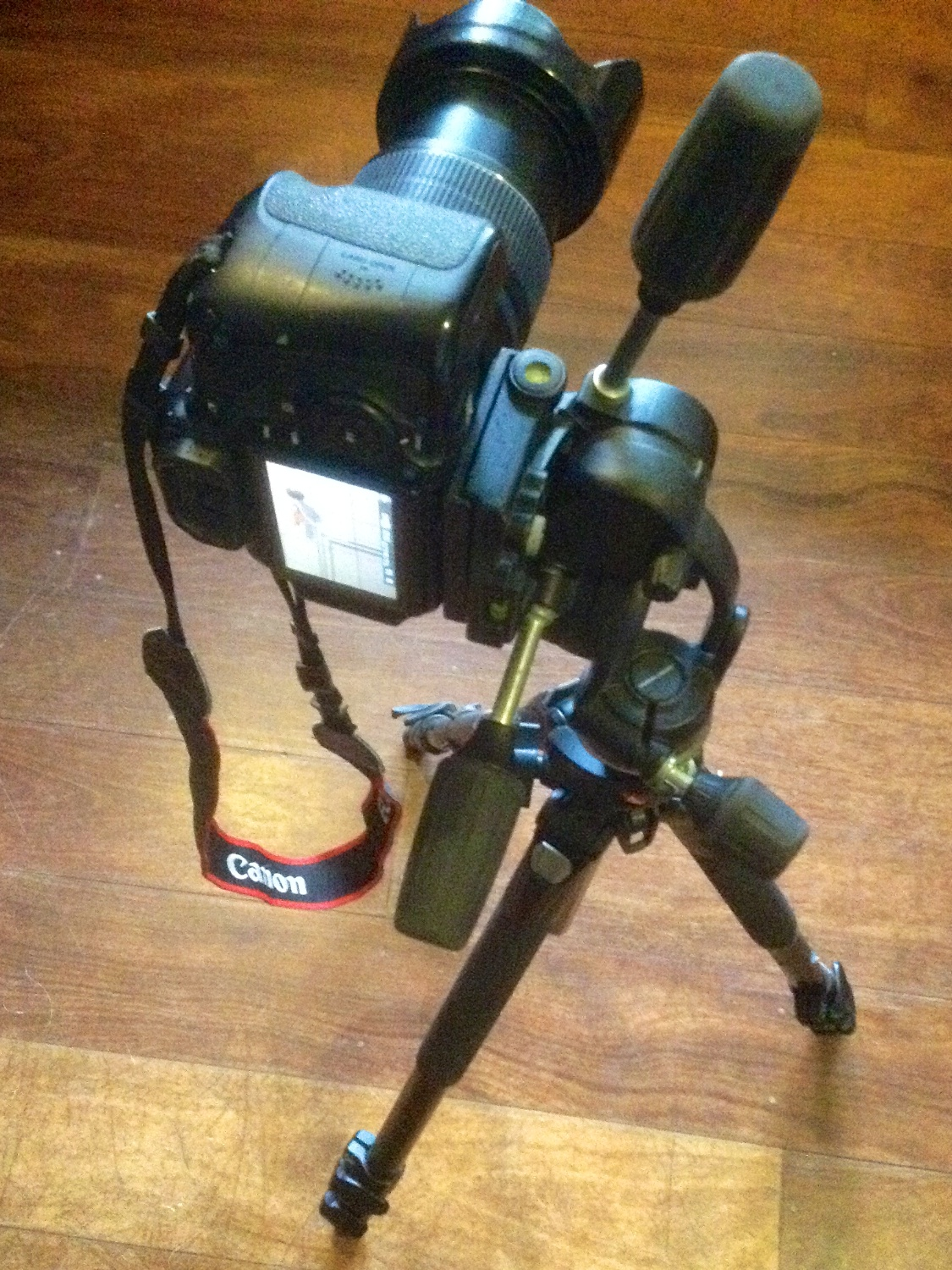 Manfrotto 808 3-way tilt head tripod with Canon 60D atop.