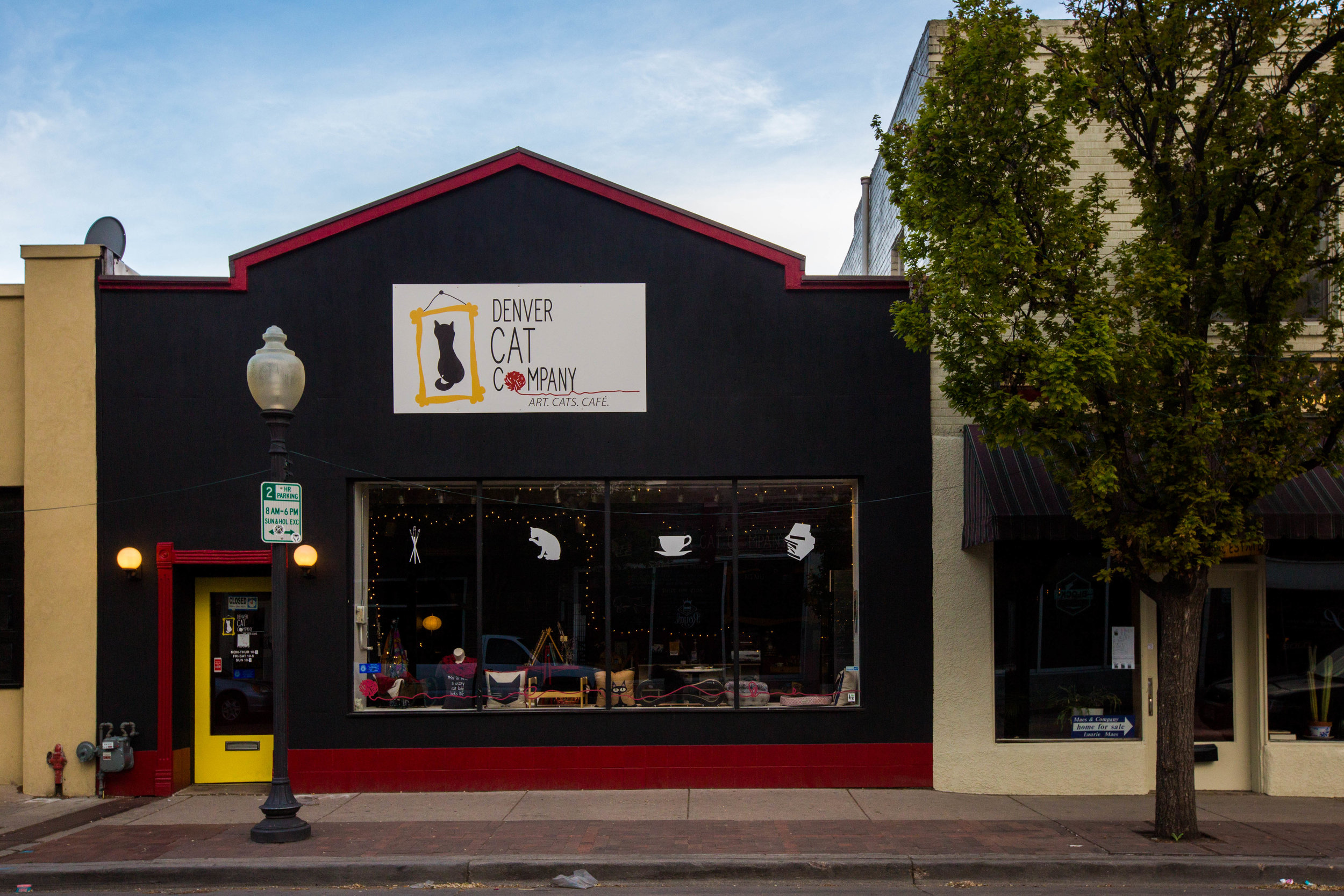 Our fabulous location on historic Tennyson Street (near the Highlands in Denver) means you can make a day of shopping at local boutiques and gift shops, brunching with friends, and petting some kitties.  Image credit: Danielle Lirette Photography