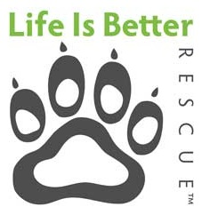 Life+is+Better+logo.jpg