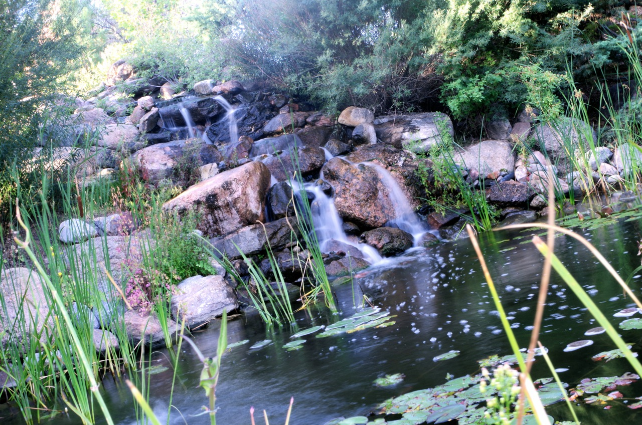 koi pond falls.jpg