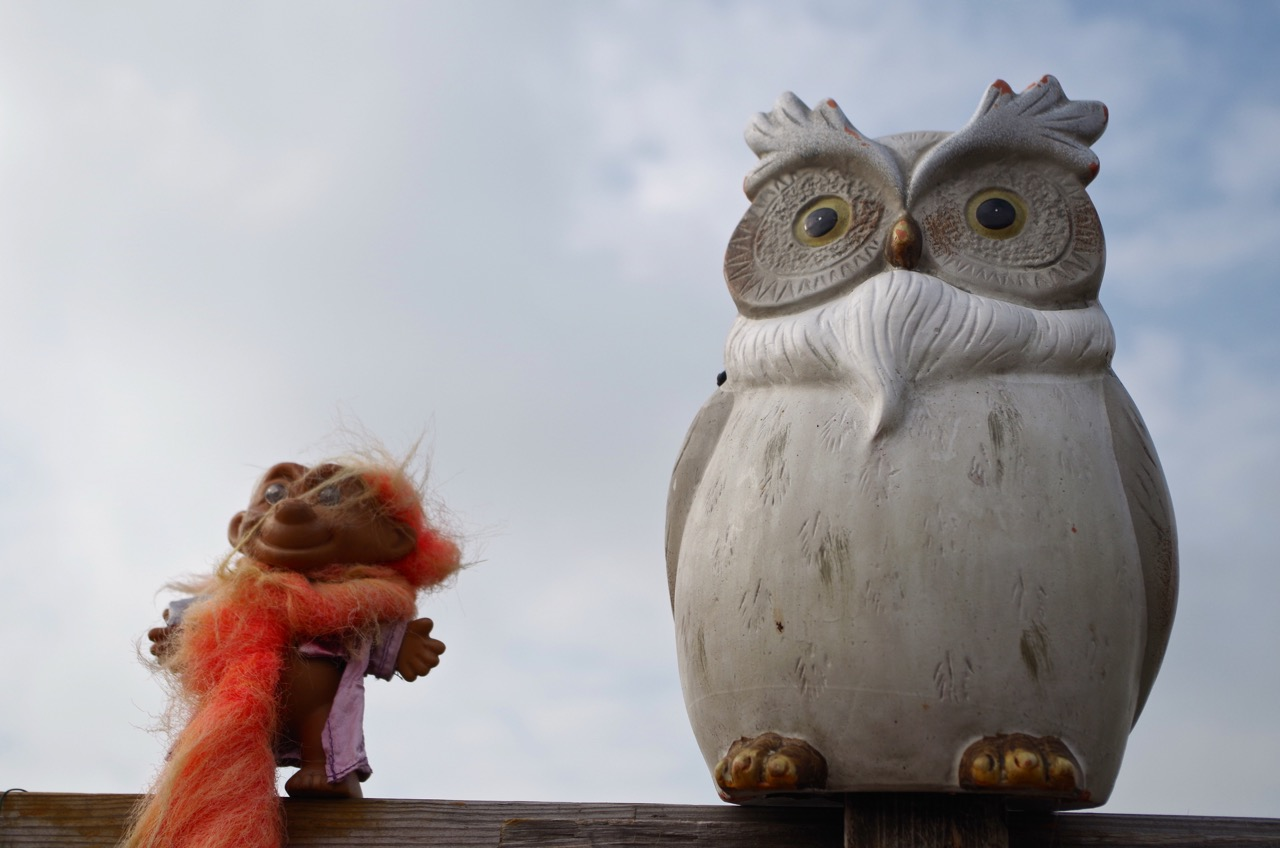 Gnome and Owl