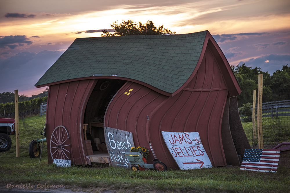 DSC_5914 Farm Stand Twirl.jpg