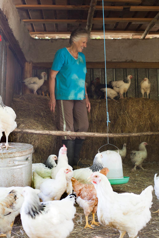 Misty_Valley_Farm_10_web.jpg