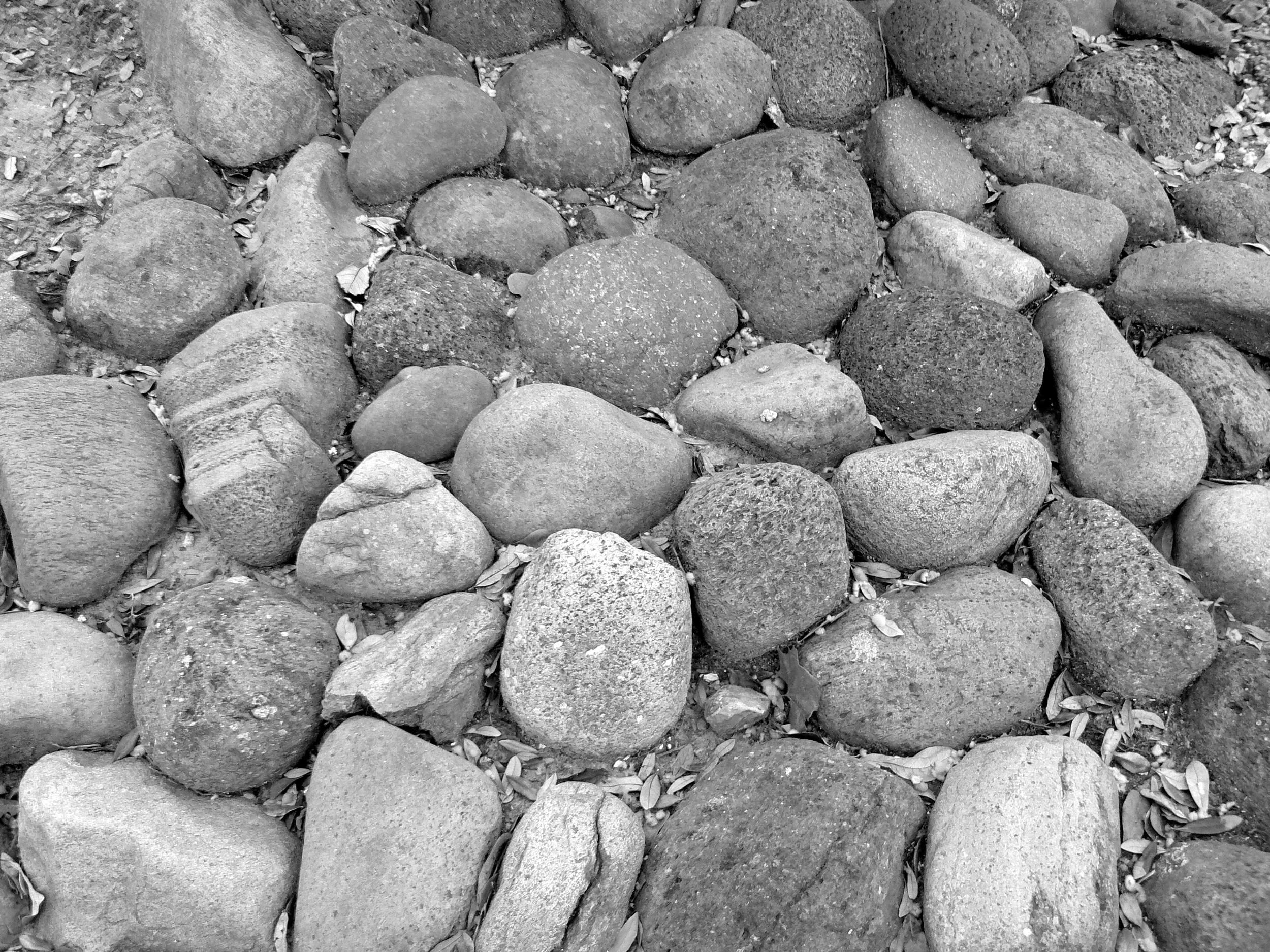 Texas Rocks