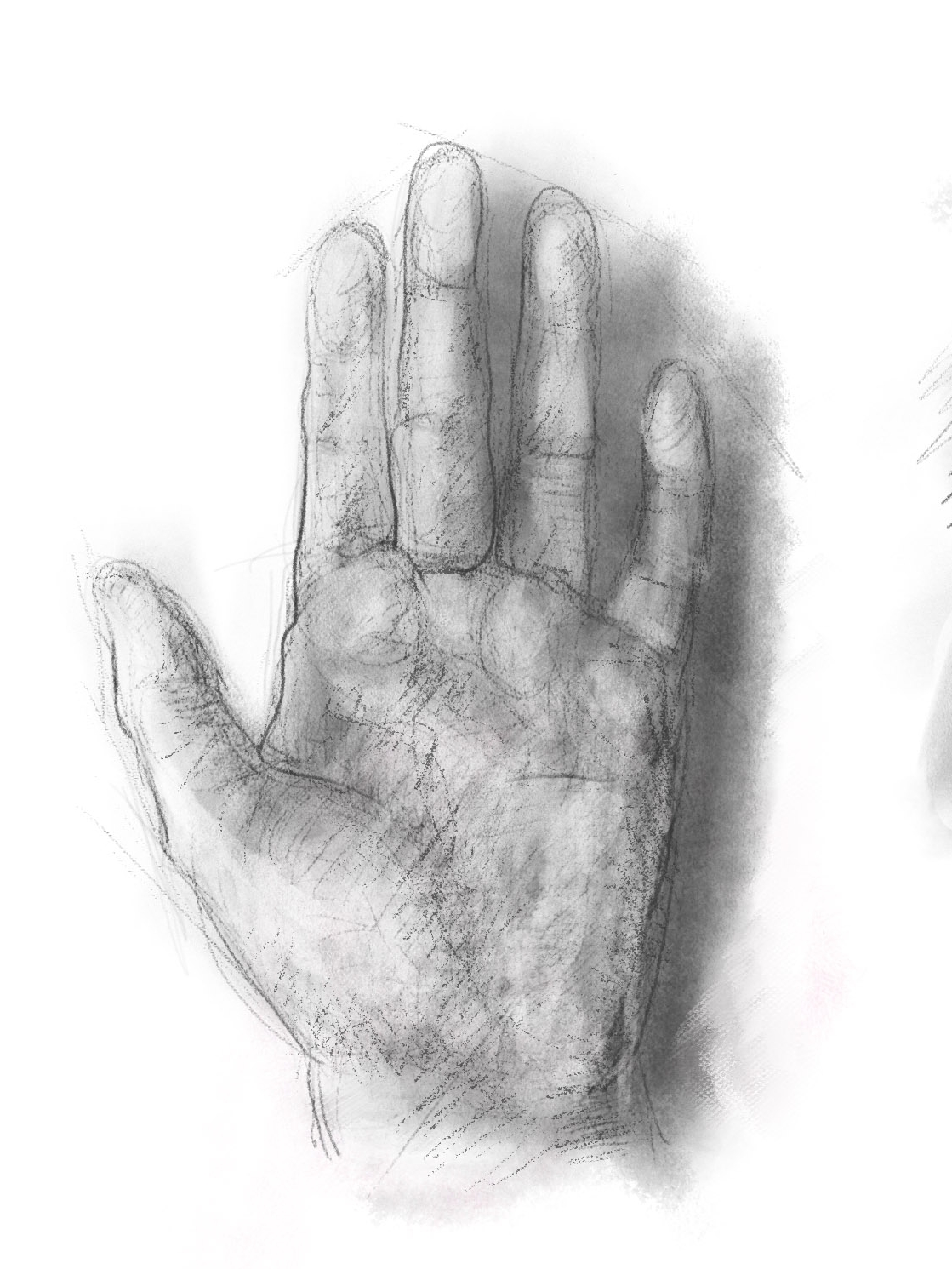Study of a hand- digital photoshop painting