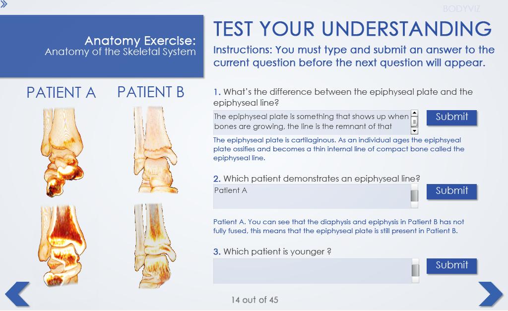 6- testing understnading 1.png