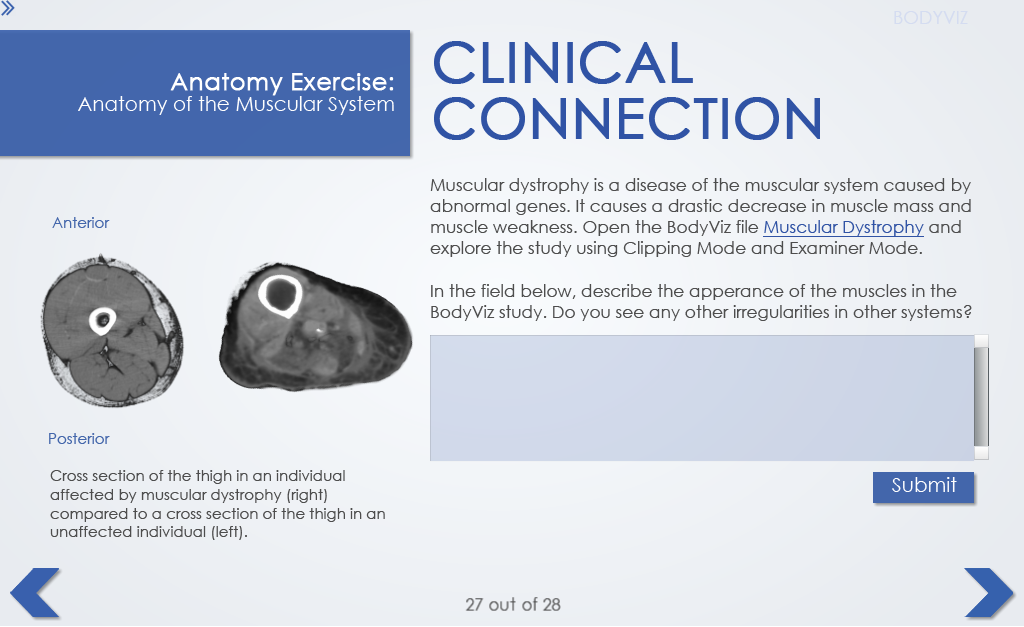 8.clinical connections.png
