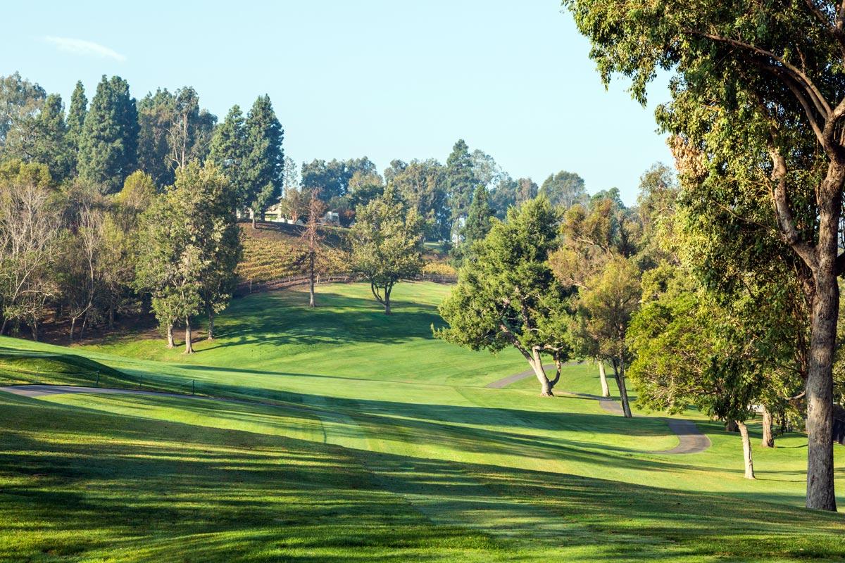 Golf-4.jpg