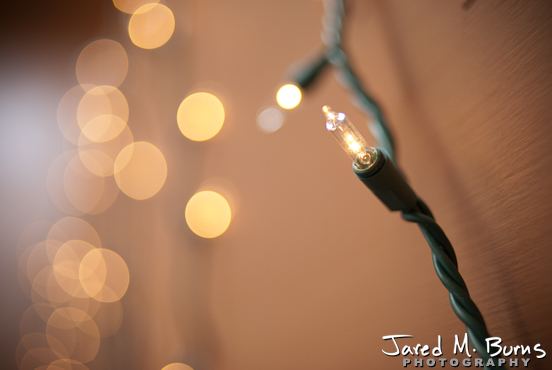 Jared_M_Burns-Snohomish_Wedding_Photographer-Jessica_Ben (3)