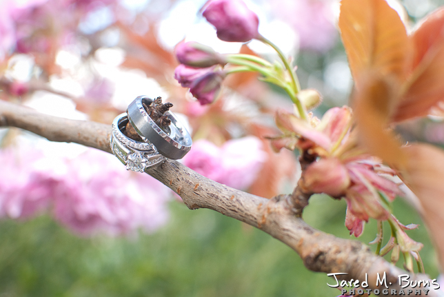Jared M. Burns Lord Hill Wedding Snohomish, Seattle Wedding Photographer - Rings