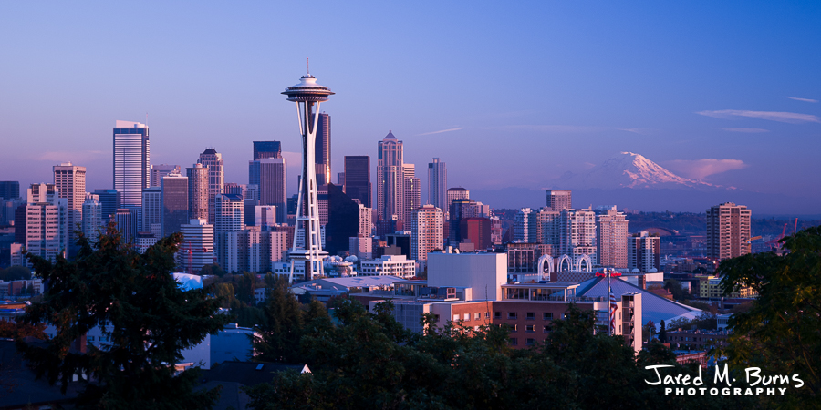Snohomish Seattle Photographer - Seattle Skyline.jpg