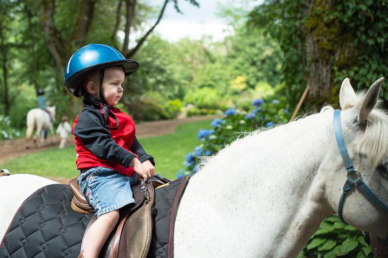 Snohomish Family Photographer - Boy on a horse