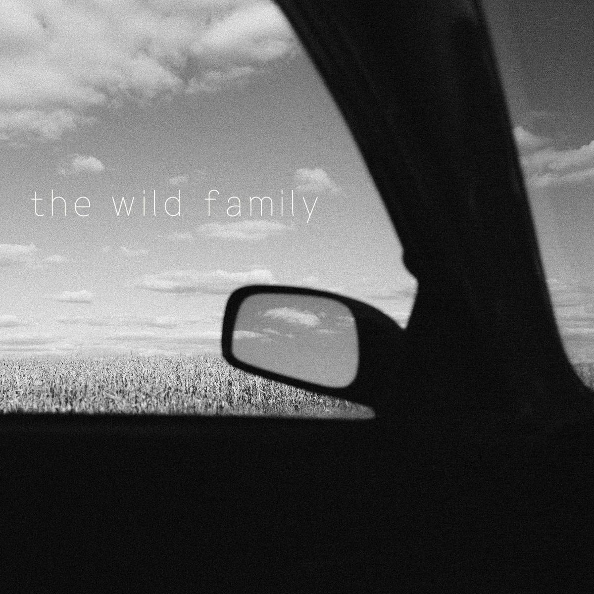 the wild family.jpg