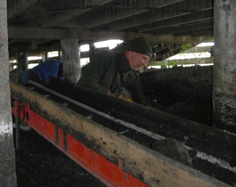 Loading onto the conveyor belt