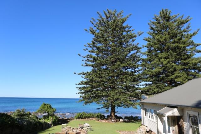 SHAYNE_ALLEN_THE BEACH HOUSE IN AVALON_138A8927.jpg