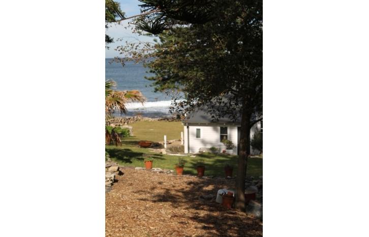 SHAYNE_ALLEN_THE BEACH HOUSE IN AVALON_show-IMG1557.jpg