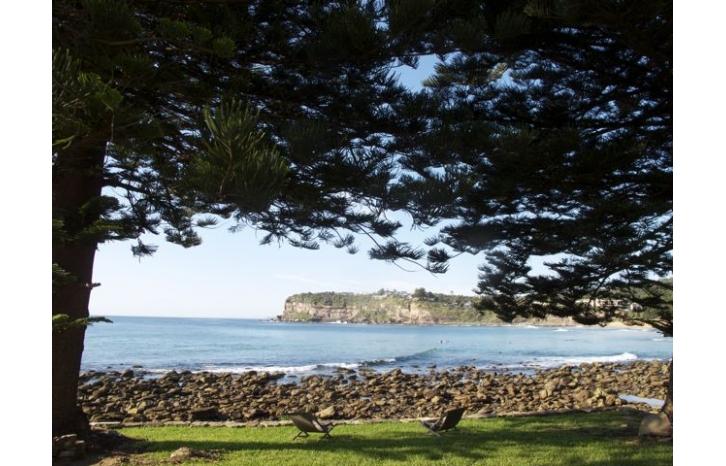 SHAYNE_ALLEN_THE BEACH HOUSE IN AVALON_show-IMG2172.jpg