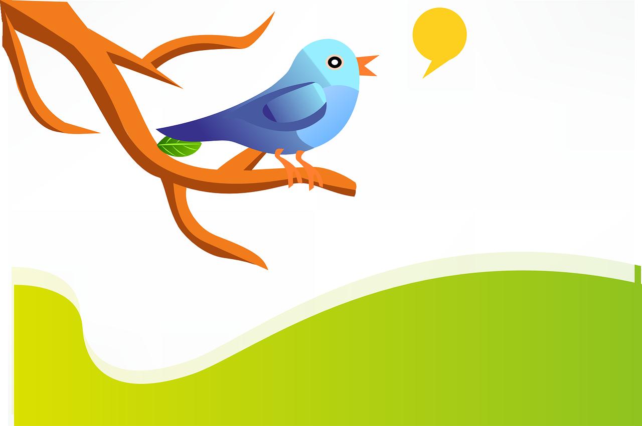 Twitter Sander Bon mond-tot-mondreclame marketing reclame duurzaam mond-tot-mond Wageningen Ede marketingbureau