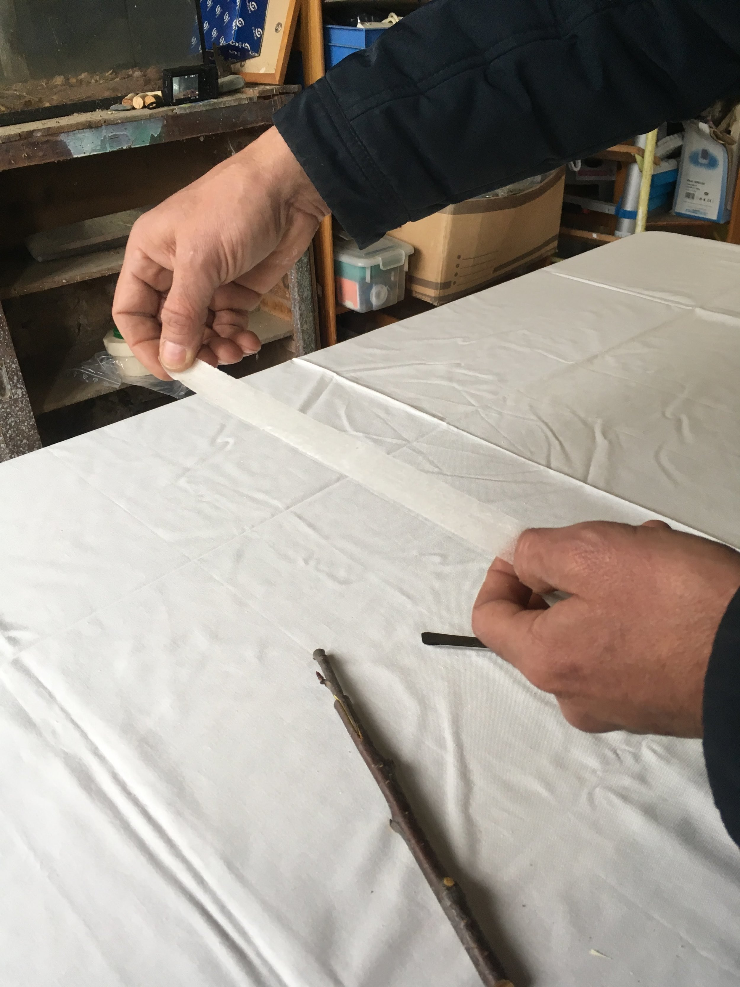 Grafting-tape-fruit-vines-wax-and-grafts