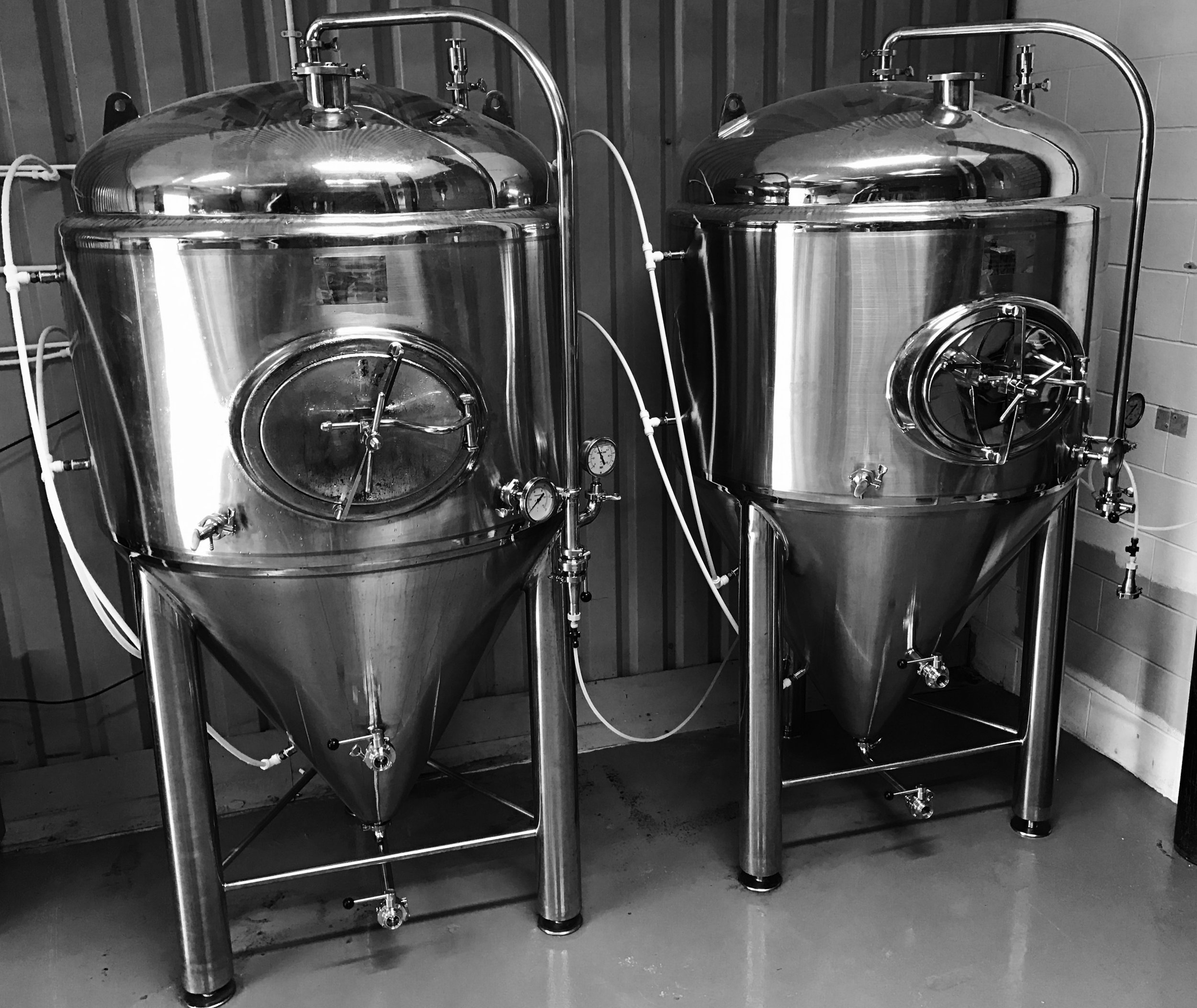 The 1,500 litre unitanks we're using as conditioning tanks
