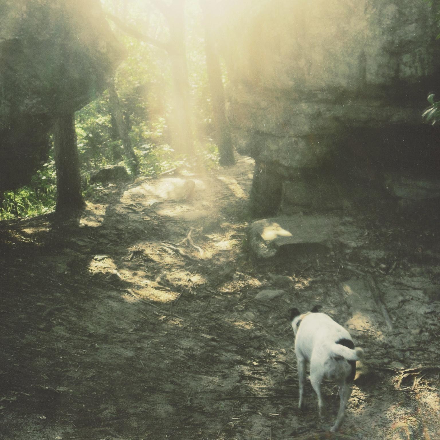 Moor Hound - Stifled Spirit