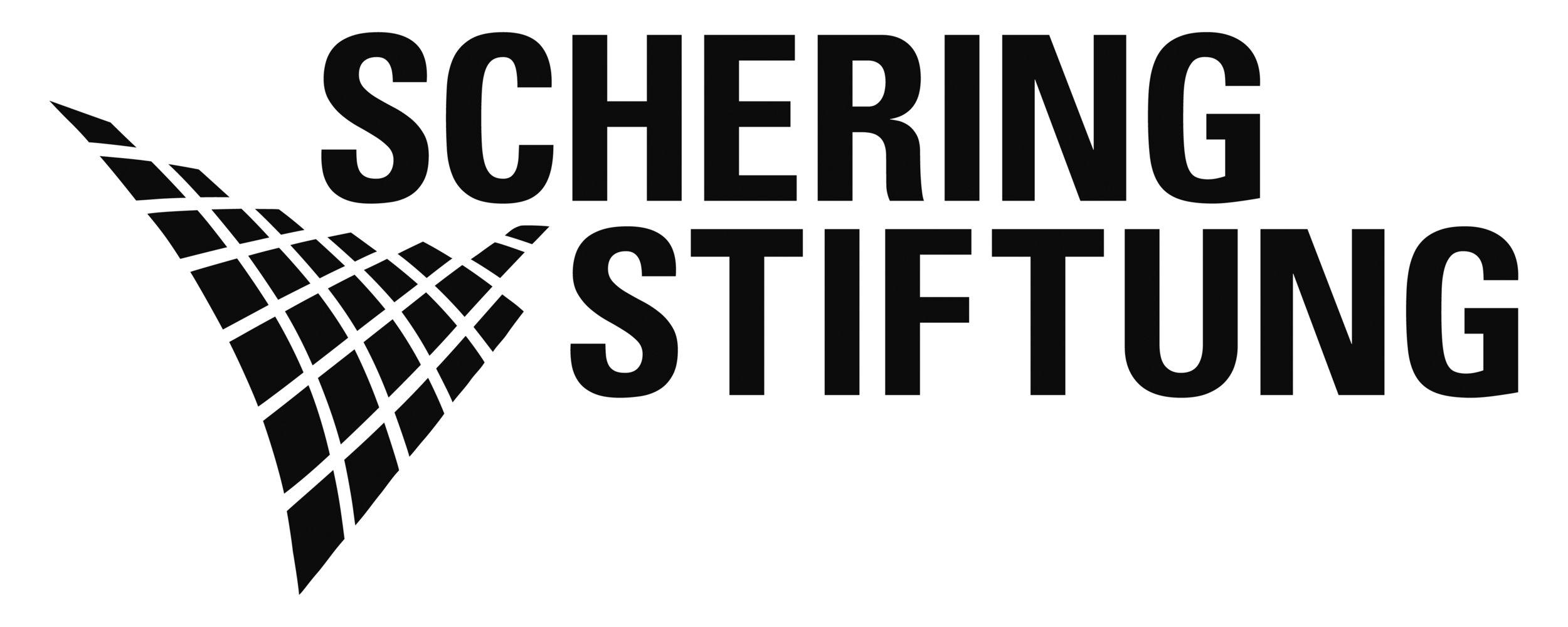SST_Logo_SW_30cm_RZ.jpg