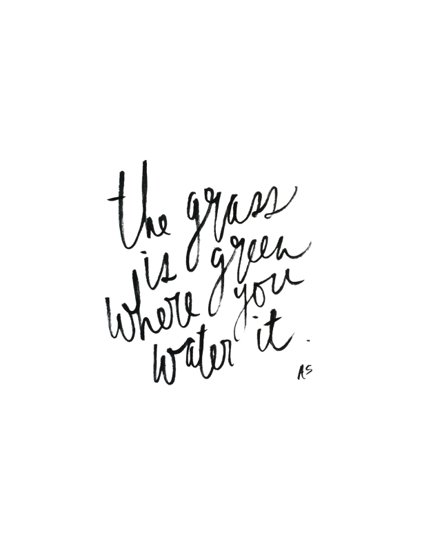 the grass is green where you water it