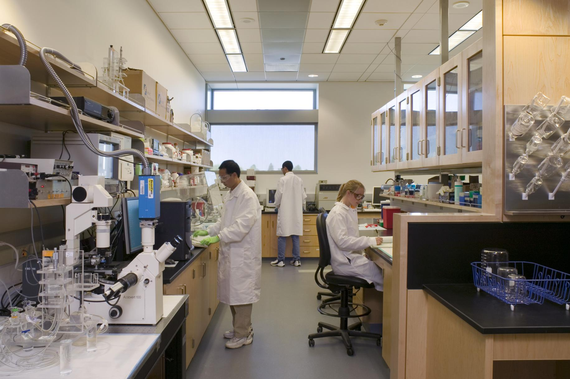 ¿Alguna vez pensaste en dar clases de Historia? ¿Te visualizas como un científico bioquímico? Tal vez esto no te suene muy común, pero son excelentes opciones al elegir una carrera. Descubre las 10 carreras con la menor tasa de desempleo, según un estudio realizado por el portal estadounidense de carreras profesionales Zippia. - Foto:Biomedical Engineering Lab/UC Davis College of Engineering