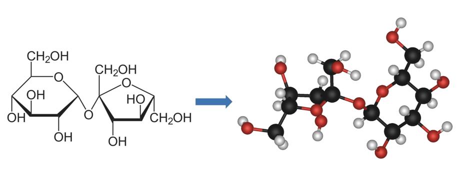 Tabla 1:  La representación de una molécula de sacarosa (azúcar de mesa) pasa de ser una imagen de dos dimensiones sobre el papel (izq.) a un objeto tridimensional (der.) que se puede girar y visualizar desde varios ángulos cuando se modela en una computadora. Fuente: Creación Propia.