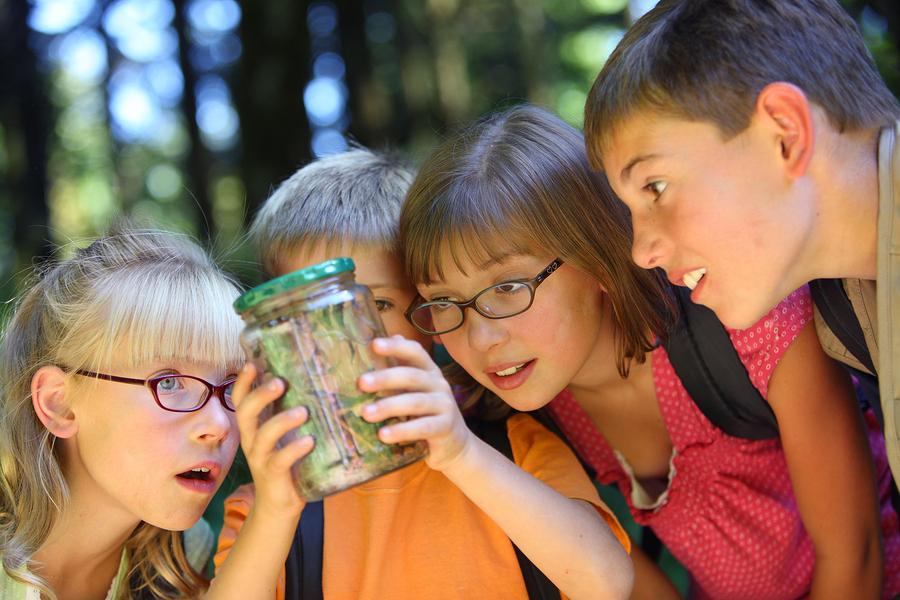Desde hace algunos años han cobrado importancia las bosque escuelas, zonas al aire libre donde prospera la interacción con la naturaleza y florecen enriquecedoras experiencias educativas. - Foto: Bigstock