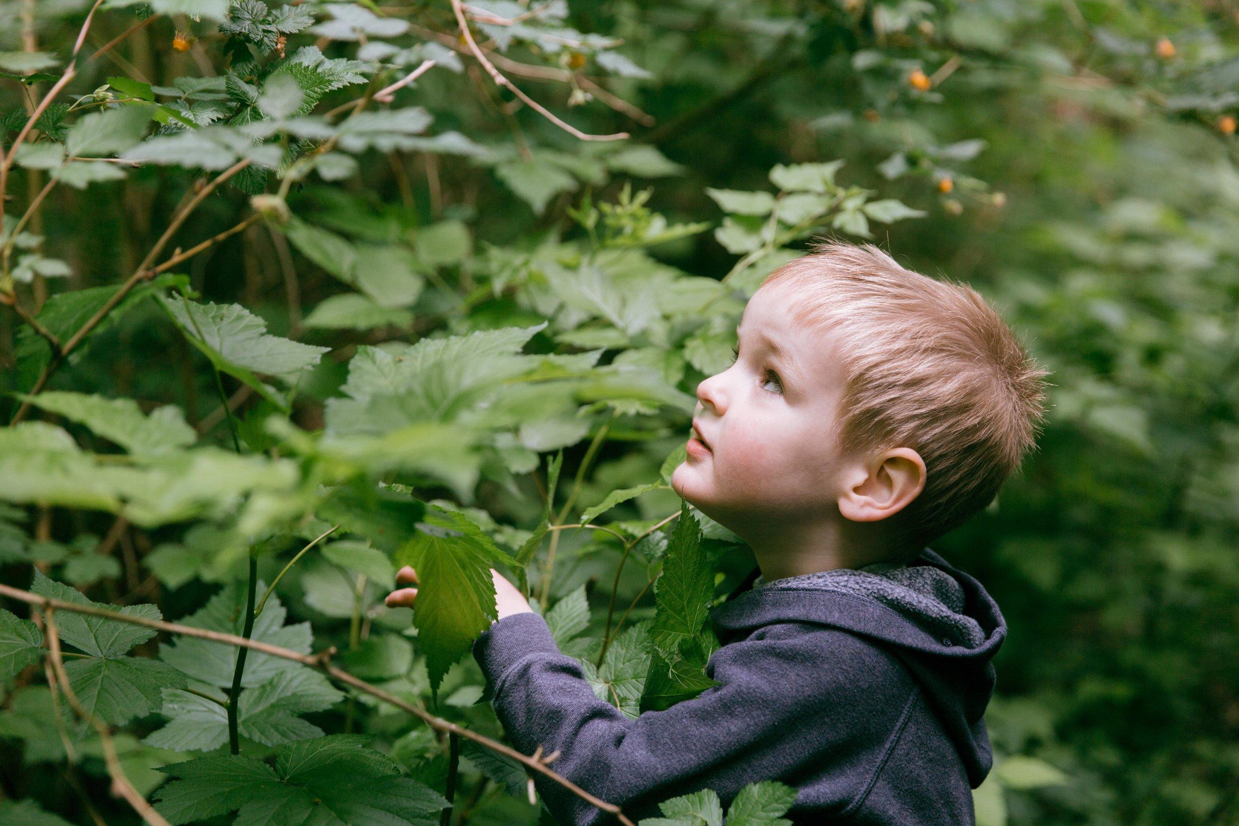 Sienna-Renee-Photography-Nature-Nuts-4006.jpg