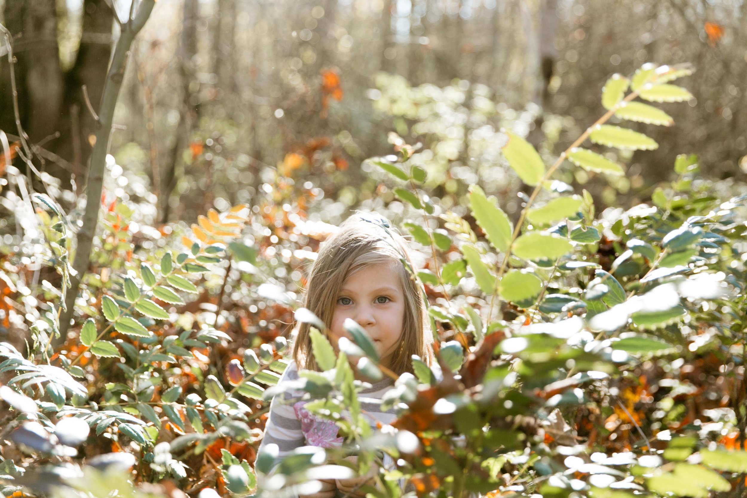Sienna-Renee-Photography-Nature-Nuts-0633.jpg