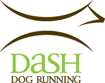 Dash Dog - Custom Dog Running Leash Partner
